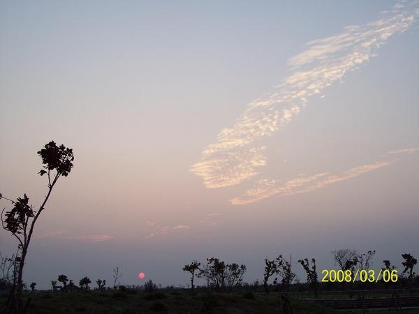 200836日拍攝於自家附近_001.jpg