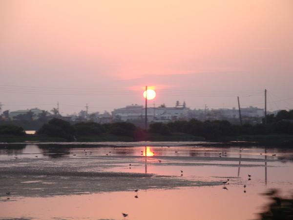 20100221拍攝於前往濱海的路上03.jpg