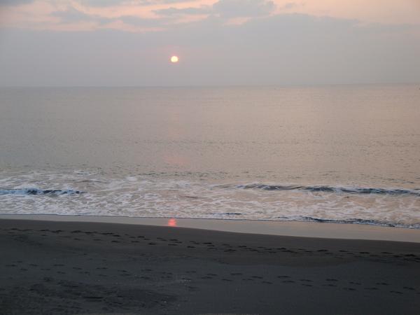20100206拍攝於濱海05.jpg
