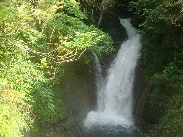 20111012拍攝於知本森林遊樂區030.JPG