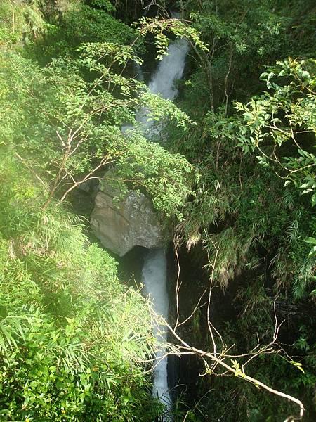 20111012拍攝於知本森林遊樂區033.JPG
