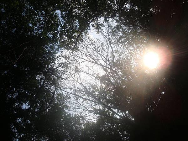 20111013拍攝於小琉球093.JPG