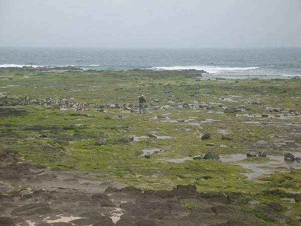 20120205攝於前往龍門後灣的途中003.JPG