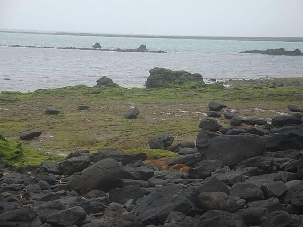 20120205拍攝於奎璧004.JPG