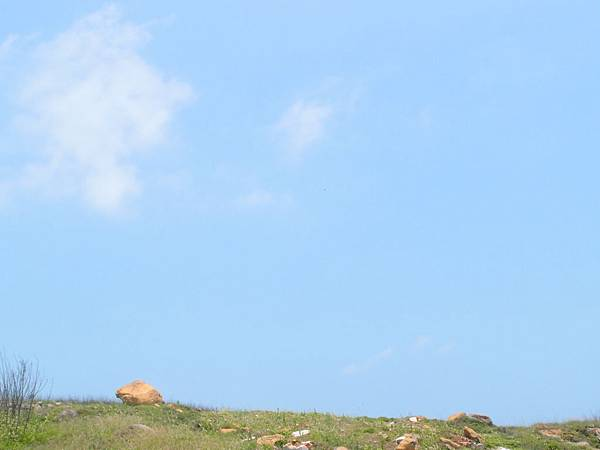 20120524拍攝於大倉嶼12