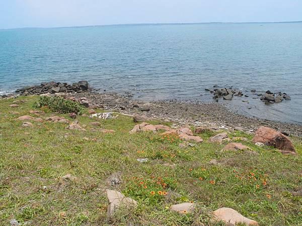 20120524拍攝於大倉嶼15