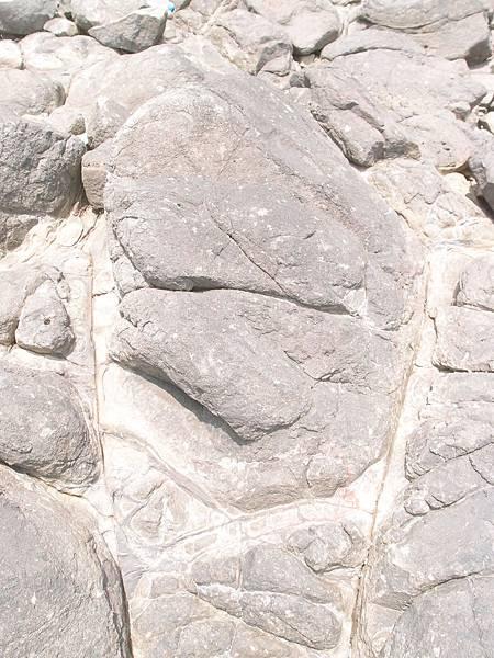 20120524拍攝於大倉嶼21