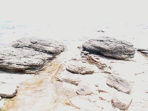 20120524拍攝於大倉嶼27