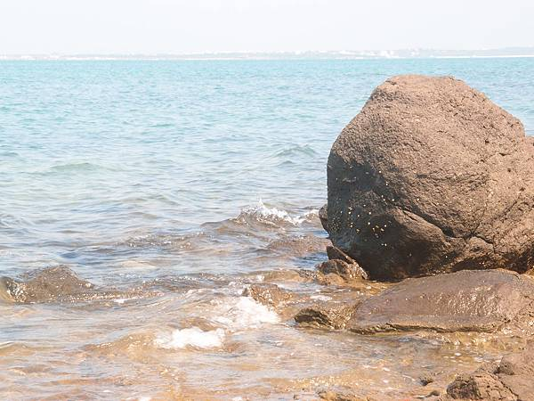 20120524拍攝於大倉嶼86