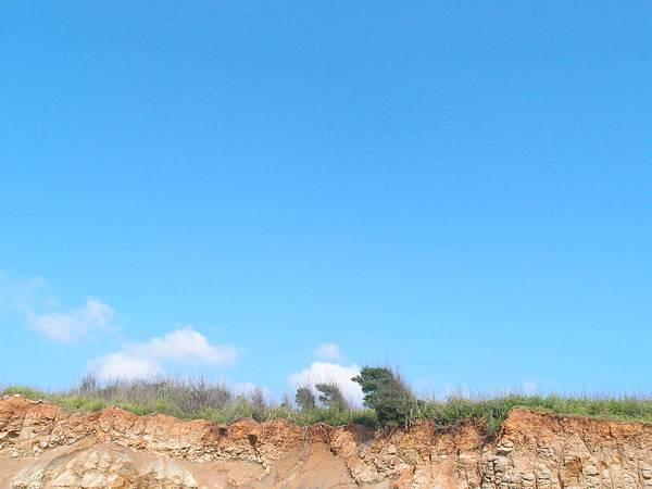 20120525拍攝牛踏尾13