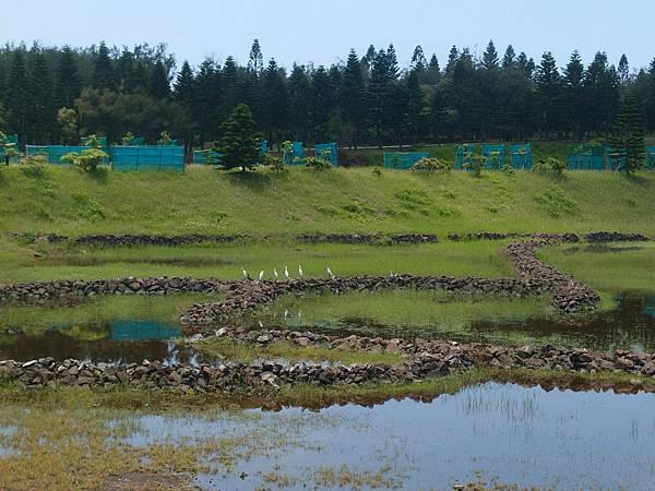 20120525拍攝於天人湖01