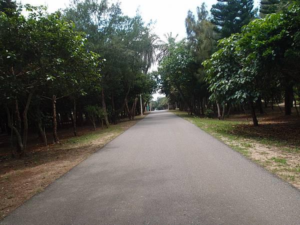 20120525拍攝於天人湖05
