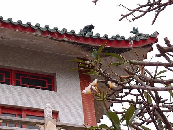 20121226拍攝於潮音寺002