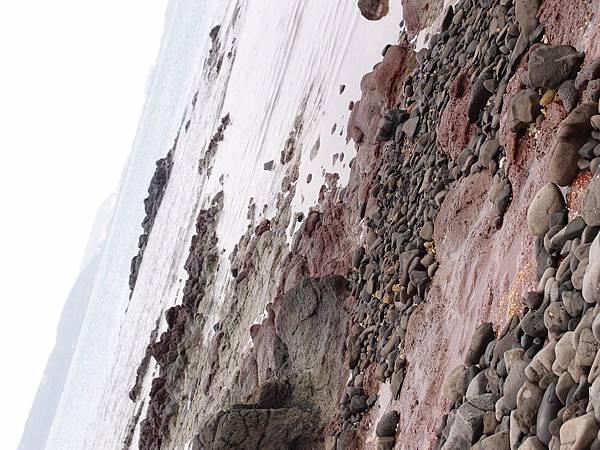 20121227拍攝於西嶼學仔尾006