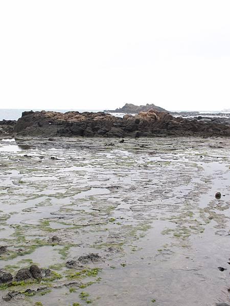 20121227拍攝於西嶼學仔尾008