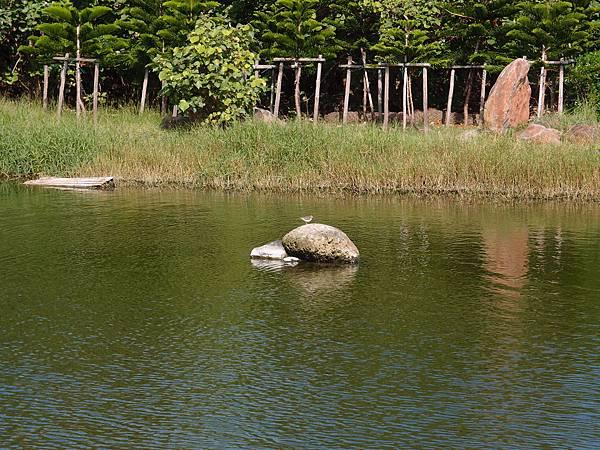 20121229拍攝於山水012