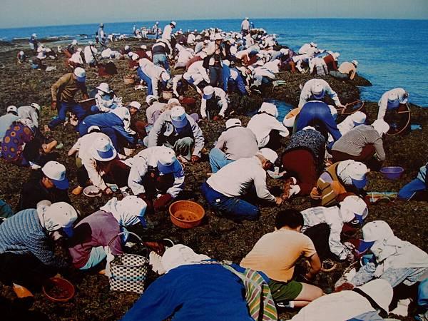 20121230拍攝於海洋地質公園中心019