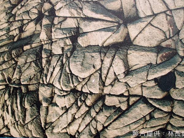 20121230拍攝於海洋地質公園中心025