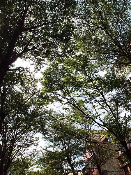 20130514鹿港老街廟宇隨拍034