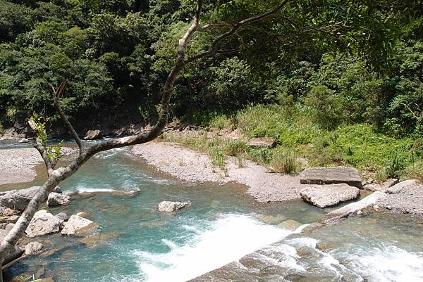 20130906拍攝於雙流森林公園029.JPG