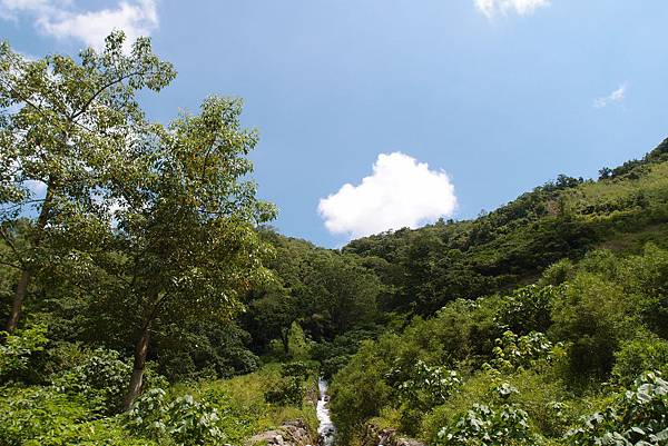 20130906拍攝於雙流森林公園036.JPG