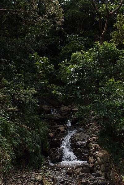 20130906拍攝於雙流森林公園037.JPG