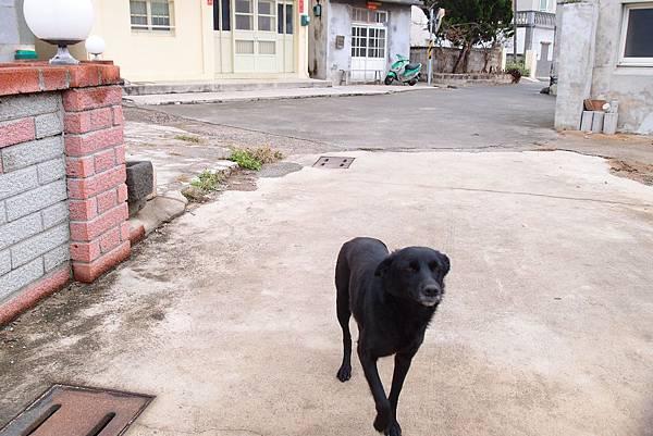 20140213拍攝於宅腳嶼004