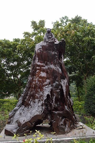 20150306拍攝於知本森林遊樂區002