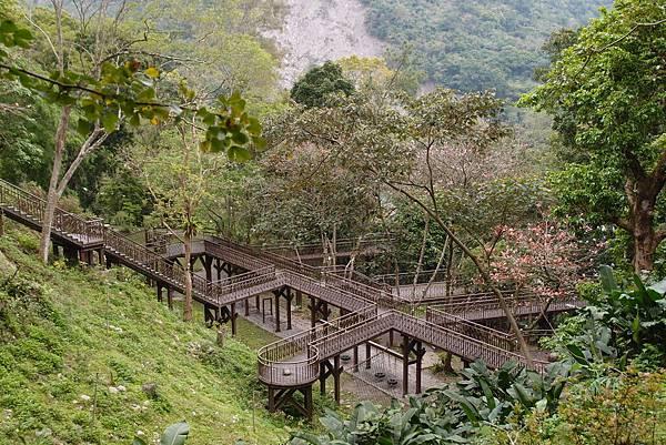 20150306拍攝於知本森林遊樂區006