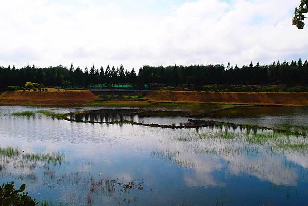 20150604拍攝於天人湖002