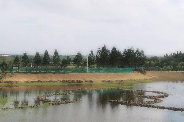 20150604拍攝於天人湖006