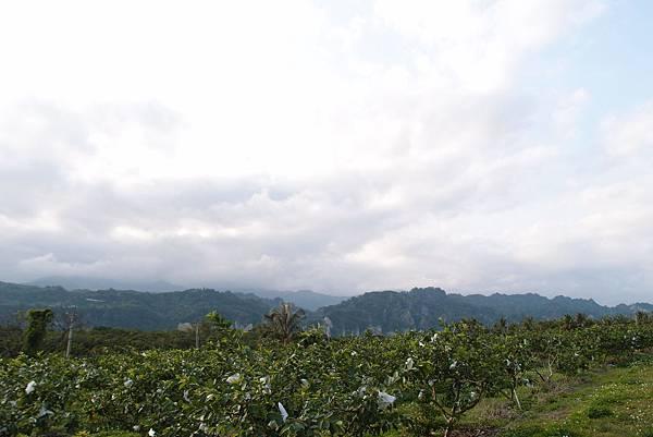 20160219遠眺小黃山001