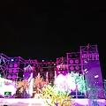 20200203花蓮石藝大街 (11).jpg