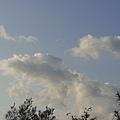 20200203海豚雲.jpg