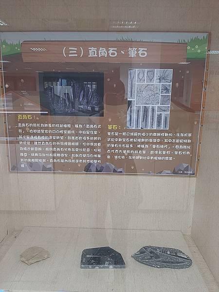 20200205台東縣自然史教育館 (58).jpg