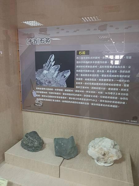 20200205台東縣自然史教育館 (74).jpg