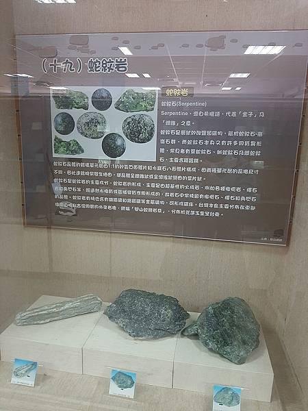 20200205台東縣自然史教育館 (76).jpg