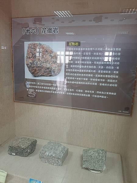 20200205台東縣自然史教育館 (75).jpg