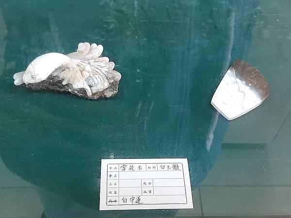 20200205台東縣自然史教育館 (83).jpg