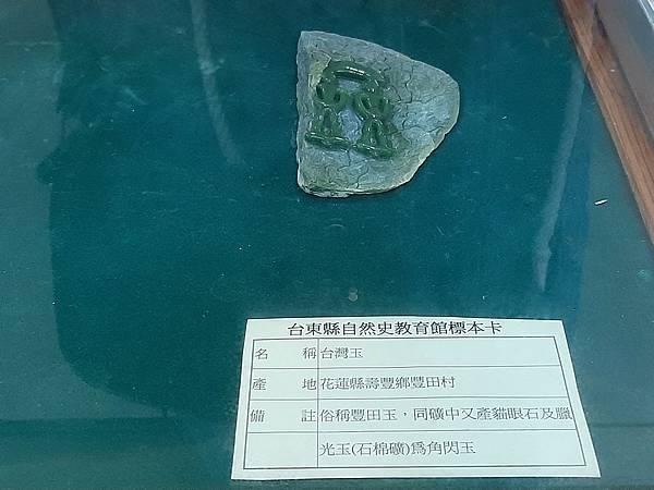 20200205台東縣自然史教育館 (88).jpg