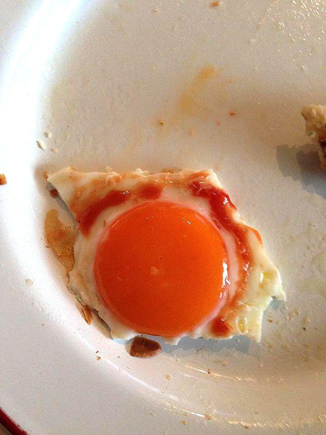egg_副本