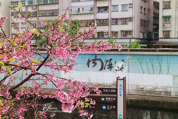 IMG_2012_副本.jpg