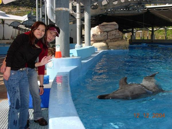 931212 海洋公園海豚14~2.jpg