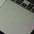 PIG_1672_meitu_2.jpg