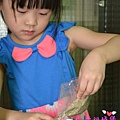 PIG_1968_meitu_22.jpg
