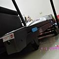 PIG_3293_meitu_3.jpg