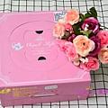 PIG_0187_meitu_21.jpg