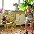 PIG_0649_meitu_11.jpg