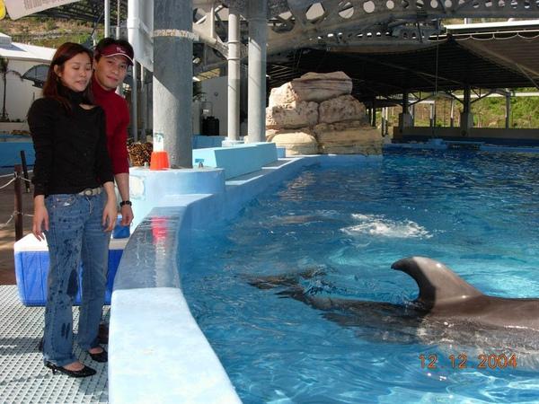 931212 海洋公園海豚13~2.jpg