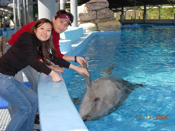 931212 海洋公園海豚7~2.jpg